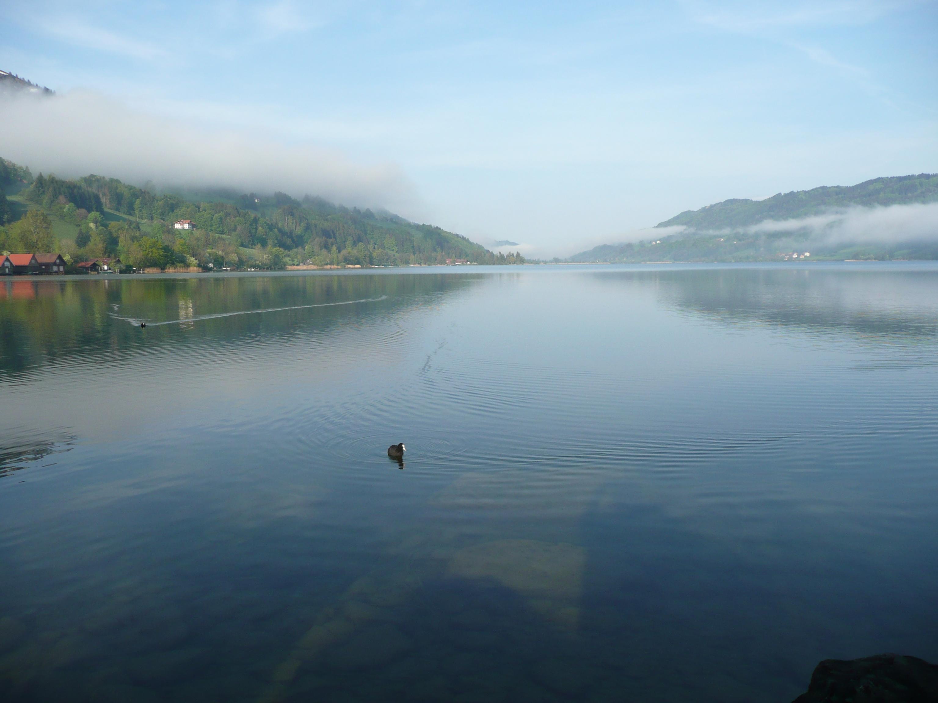 Een van de belangrijkste meren in de regio Allgau is de Alpsee. De watertemperatuur van dit meer is gemiddeld 17ºC.