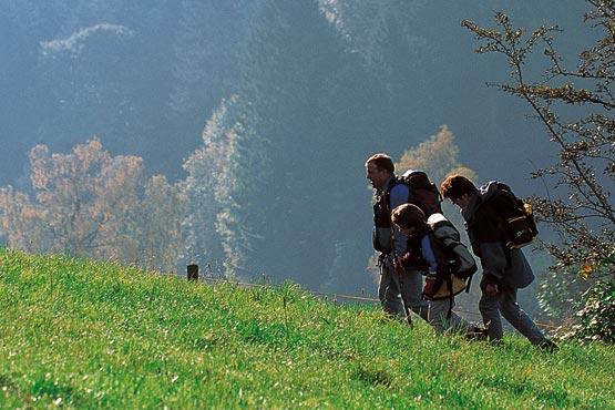 In de omgeving vindt u een netwerk van goed bewegwijzerde wandelroutes. Tijdens deze routes komt u langs burchten, kastelen, kerken en kloosters, zodat u niet alleen van de natuur, maar ook van de cultuur kan genieten.